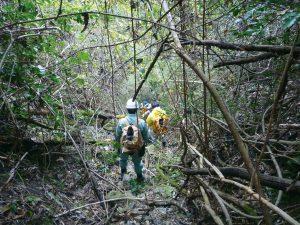 地籍調査業務2