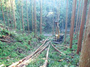 簡易架線系利用間伐