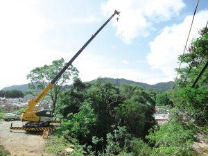 生活・環境林整備